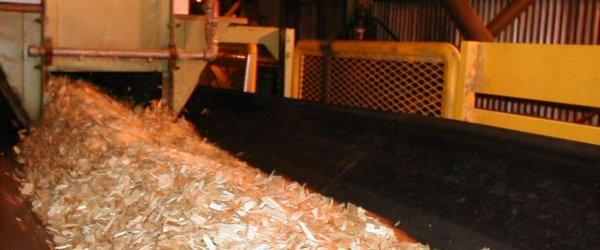 DSI Snake Sandwich Conveyor at Pulp Mill, Western Canada
